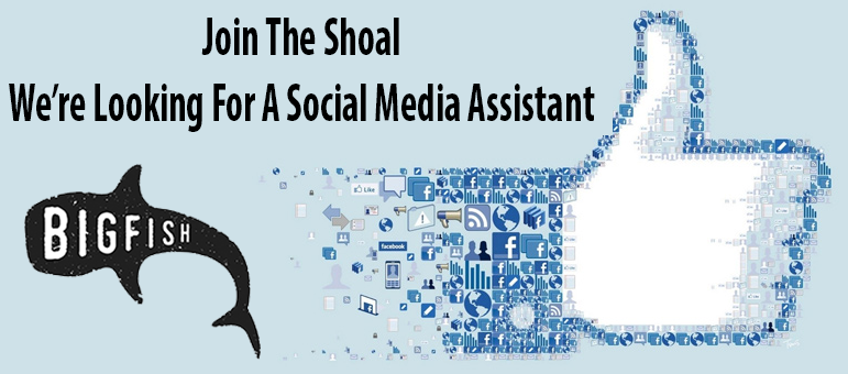 Social Media Management | Content Creation | Websites